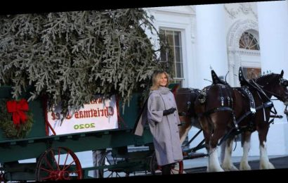 Melania Trump Reveals A New Look To Greet The White House Christmas Tree