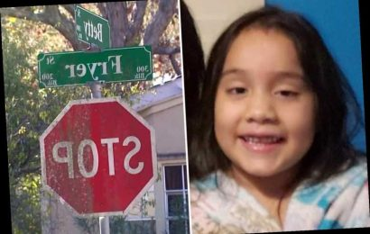 Girl, 6, dies after being hit by school bus as family mourn their 'beautiful princess'