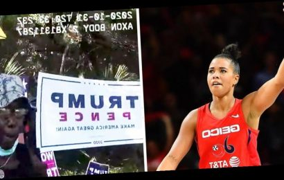 A WNBA star bailed a Florida woman out of jail after she was arrested for destroying Trump campaign signs