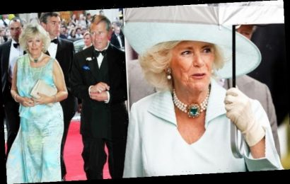 Family sentiment behind necklace Camilla wore in early years of Charles marriage