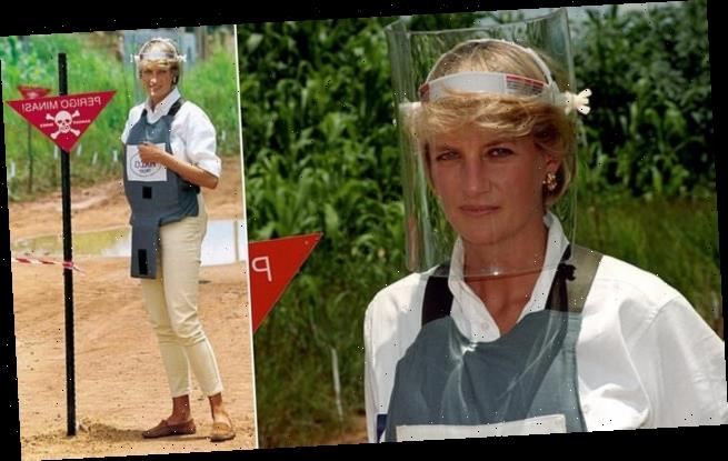 Princess Diana planned on doing anti-landmine tour months before death