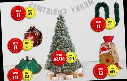 Homebase launches Christmas clearance sale with up 75% off decorations and trees