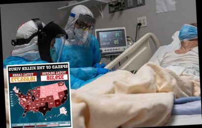 US Covid death toll 'could hit 567k by April even with vaccine rollout & could reach 731k if states ease restrictions'