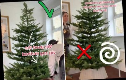 You've been hanging your Christmas tree lights all wrong… the 'zig-zag' method is quicker easier AND cheaper