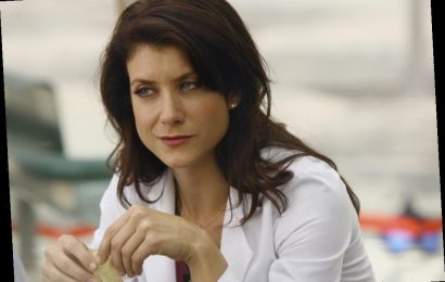 'Grey's Anatomy': Jo Wilson Could Be the Next Addison Montgomery — Prompting a Kate Walsh Appearance