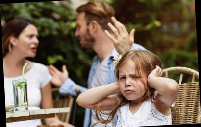 My daughter's partner will ruin Christmas but she won't come unless he's invited