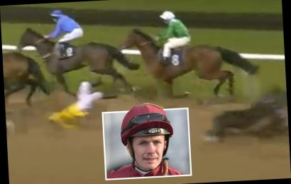 Jockey's ban for 'very serious case of careless riding' that led to rival being flung like 'rag doll' in fall kicks in