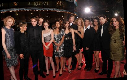 'Twilight': We All Know About Robert Pattinson and Kristen Stewart, But Did Any Other Co-Stars Hook Up?