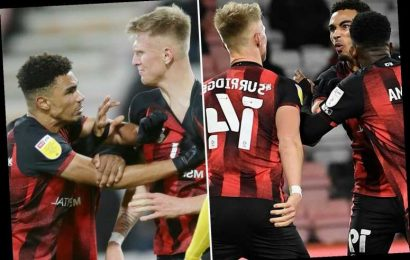 Watch Bournemouth stars Surridge and Stanislas in shoving match in middle of game before team-mates jump in