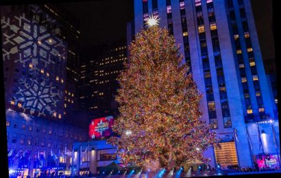 Bill de Blasio's rules for the Rock Center tree make absolutely no sense