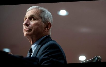 Dr. Anthony Fauci lays out timetable for when sports fans can return to packed stadiums, arenas