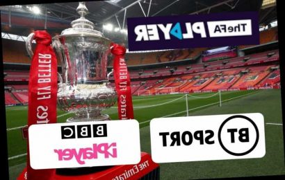FA Cup third round TV fixtures: How to watch and live stream FREE with games on BT Sport, FA Player and BBC iPlayer