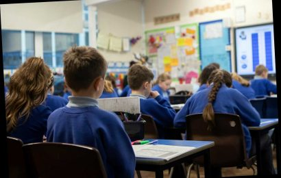 Schools '50% full' during Covid lockdown despite only being open to key workers' children