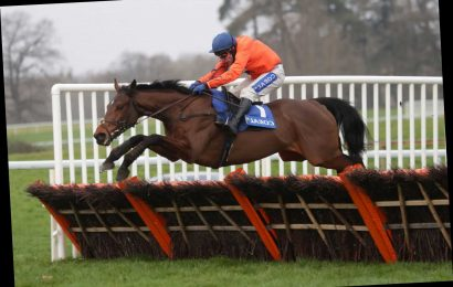 David Pipe bag in the big time after ending 2,043 day Grade 1 drought with exciting Triumph Hurdle contender Adagio