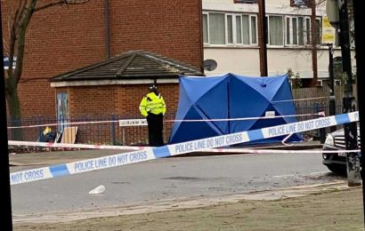 Boy, 17, knifed to death in North London is first teen to be murdered in the capital this year