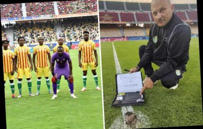Zimbabwe boss accuses Cameroon of WITCHCRAFT after dead bat found on the pitch of African Nations Championship opener