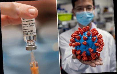 Covid outbreak started in China in October 2019 – MONTHS before Beijing alerted the world, say US scientists