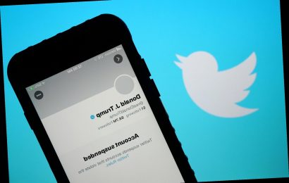Trump fans ditch Twitter en masse after president's suspension