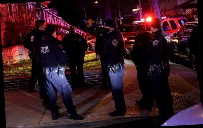 Cops shoot machete-wielding man in Queens