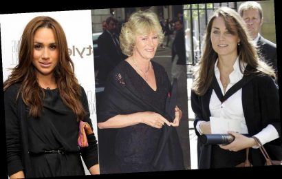 The jobs Kate Middleton, the Countess of Wessex and others had before joining the royal family