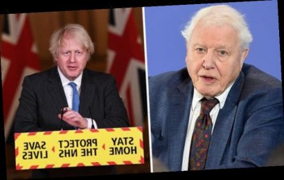David Attenborough may never film overseas again after Boris Johnson's restrictions