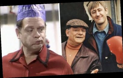 Only Fools and Horses: Del Boy's retirement episode 'cut' as comeback plans changed