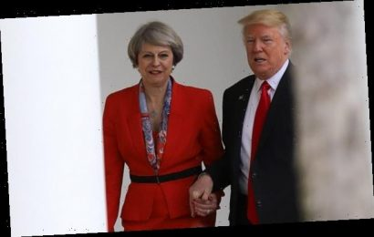 Theresa May 'called her husband after she was pictured with Trump'