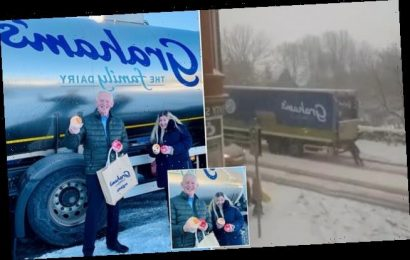 Woman who pushed lorry up snowy hill gets a year's free supply of milk