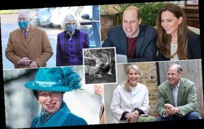 Queen wants new start for 'magnificent seven' senior royals