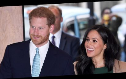Surprise! Prince Harry and Meghan Markle Attend Virtual Poetry Class