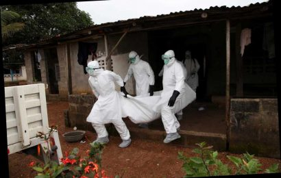 Ebola kills three & five test positive for deadly virus in Guinea as country fears new resurgence