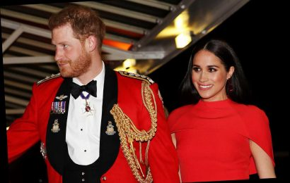 Meghan Markle and Prince Harry: Which honours, titles and patronages have they lost and what have they retained?