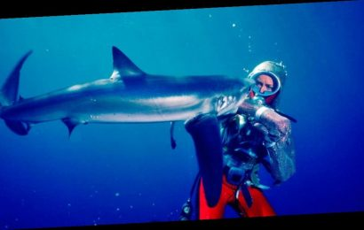 Nat Geo Doc Films Acquires 'Playing With Sharks' – Sundance