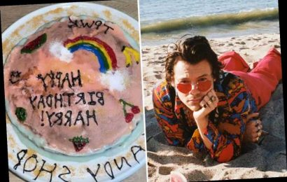 Harry Styles overwhelmed with cakes, watermelons and artworks made by fans on his 27th birthday