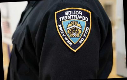 Two NYPD cops arrested in Brooklyn, the Bronx for alleged assaults