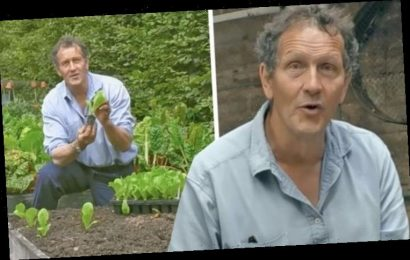 Monty Don: Gardeners' World host on gardening fail he once refused to share with viewers