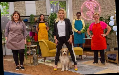 Will there be a season 2 of Pooch Perfect?