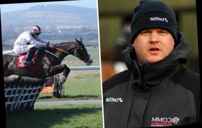 Gordon Elliott lands first win of day at Punchestown on Black Tears minutes after BHA slam 'appalling' dead horse photo