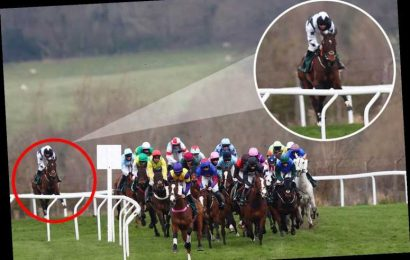 Incredible 999-1 in-running winner at Cheltenham Festival comes from dead last to first under amazing ride from jockey