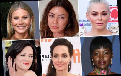 Who are Harvey Weinstein's accusers? – The Sun