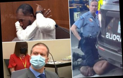 George Floyd murder trial – MMA expert witness Donald Williams 'called 911 on cops' as he watched cop kneel on neck