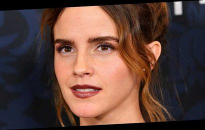 The Real Reason Emma Watson Walked Off Seth Rogen's Movie Set