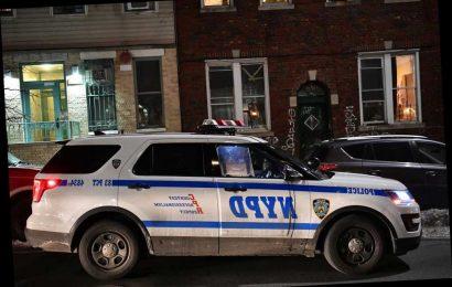 Woman allegedly stabbed boyfriend to death in their Brooklyn apartment