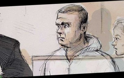 Canadian incel found guilty in van attack that killed 10 people, mostly women, in Toronto