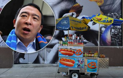 Andrew Yang 'regrets' tweet about illegal street vendors