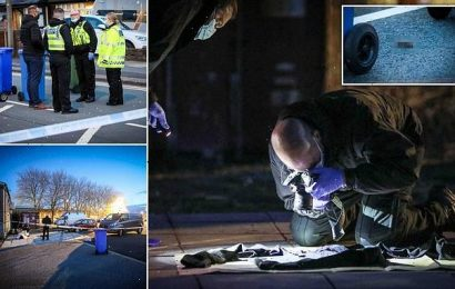 Horror as 'man's SCALP is left lying in the road after machete attack'