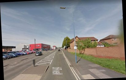 Schoolgirl, 11, sexually assaulted in street in broad daylight attack as police hunt predator