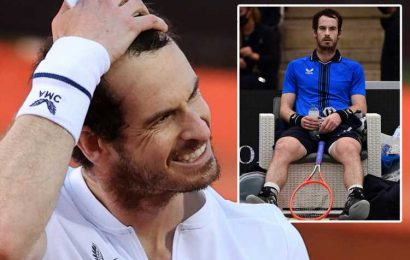 Andy Murray OUT of French Open with injury and Scot will begin preparing for Wimbledon early