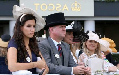 Blow for punters as NO Royal Ascot tickets to go on sale with 4,000 limit restricted to owners, hospitality and members