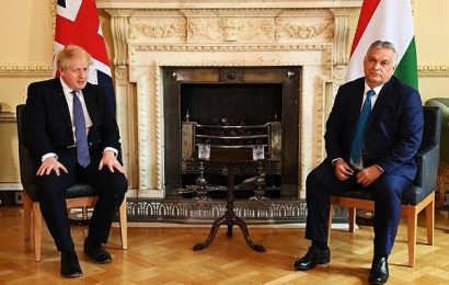 Boris Johnson meets Hungarian populist Vickor Orban in Downing Street
